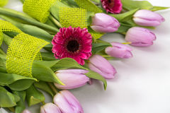 Lilac tulips and pink gerbera on a white background Stock Photo