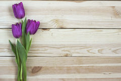Lilac tulips on planked wooden background from above, holiday de Stock Image