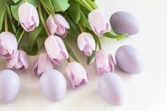 Lilac tulpen en eieren Stock Foto