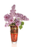 Lilac in a vase Stock Photography