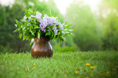 Lilac in vase. Lilac in the brown vase on the meadows stock photography