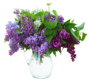 Lilac in vase Royalty Free Stock Image