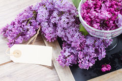 Lilac in vase. Lilac flowerw with empty tag on wooden table Stock Image