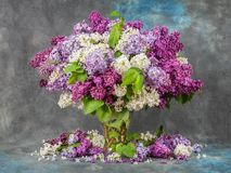 Lilac in a vase on the table. Dramatic light. stock photo