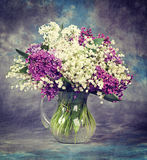 Lilac in vase. Vintage retro hipster style version Royalty Free Stock Images
