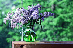 Lilac in a vase on the window Royalty Free Stock Images