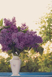 Lilac in a Vase at the window at sunset. Stock Image