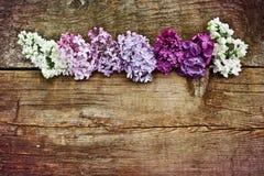 Lilac verschillende kleuren op een ruwe houten lijst Royalty-vrije Stock Foto's