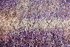 Lilac, violet, pink pebbles background stock image