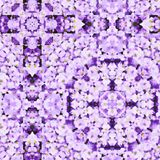 Lilac Watercolor Pattern Royalty Free Stock Photography