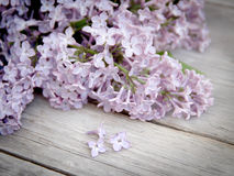 Lilac on weathered wood Royalty Free Stock Photo