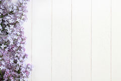 Lilac on white wooden table Royalty Free Stock Image