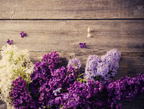 lilac on a wooden background Stock Photos