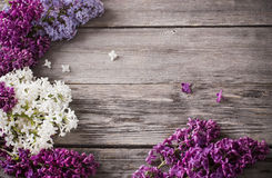 lilac on a wooden background Stock Image
