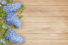 Lilac on wooden background Stock Photo
