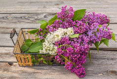 Lilac on a wooden  table Royalty Free Stock Images