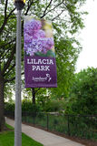 Lilacia公园伦巴第伊利诺伊 免版税图库摄影
