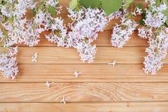 LilacLilac auf einem hölzernen Hintergrund Stockbild