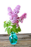 Lilacs. A Beautiful bouquet of Lilacs in a blue vase against a white background Stock Photo