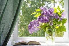 Lilacs1 Fotografía de archivo libre de regalías