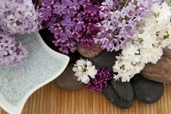 Lilacs and bath salt Stock Photo