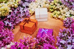 Lilacs and gift boxes on wooden background. Lilacs of different colors on wooden background and gift boxes in the middle stock images