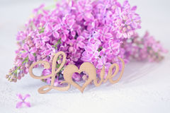 Lilacs flowers Royalty Free Stock Image