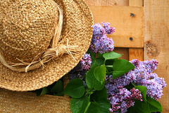 Lilacs and old summer hat. Freshly picked lilacs hanging in a wicker satchel with old summer hat Royalty Free Stock Image