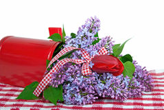Lilacs and tulip in mailbox Stock Image