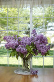 Lilacs in Vase Royalty Free Stock Photography