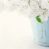 Lilacs in a wooden blue vase Royalty Free Stock Photo