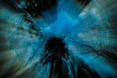 Lilan blått, svart, abstrakt himmel, träd, virvlar runt Royaltyfria Foton