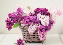 Lilan blommar buketten i den Wisker korgen royaltyfri fotografi