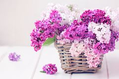 Lilan blommar buketten i den Wisker korgen royaltyfria bilder