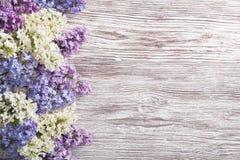 Lilan blommar buketten på träplankabakgrund, vårlila royaltyfri fotografi