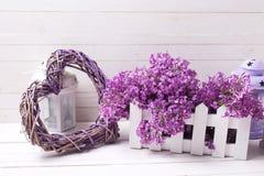 Lilan blommar i asken, dekorativa lyktor, och hjärta på vit uppvaktar Royaltyfri Foto