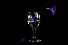 Lilan blommar i ett exponeringsglas av vatten mot en svart bakgrund Arkivbilder