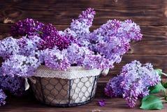 Lilan blommar i korg Royaltyfria Bilder