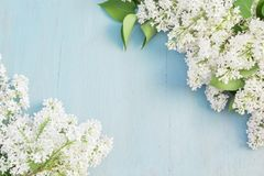 Lilan blommar på blå träbakgrund kopiera avstånd arkivfoto