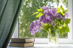 lilas Fotografía de archivo