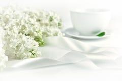Lilas blanc avec le ruban blanc au matin Photo stock