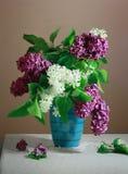 Lilas dans le vase Photo libre de droits