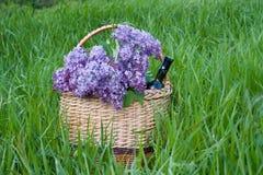 Lilas dans un panier avec une bouteille de vin, se tenant sur l'herbe verte photos libres de droits