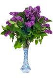Lilas dans un vase Photographie stock