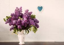 Lilas dans un vase photographie stock libre de droits