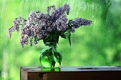 Lilas dans un vase sur la fenêtre Photos stock