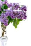 lilas en verre Images stock