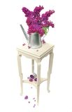 Lilas on little table Stock Photos