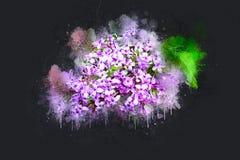Lilas lumineux de ressort fleurissant Photos libres de droits