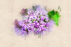 Lilas lumineux de ressort fleurissant Encre acrylique Image libre de droits